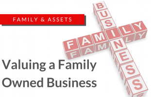 Assets; valuations; business; family
